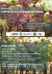 Convite_abertura da colheita da uva