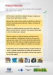 _Filipeta1_Zika2