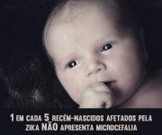 Zika(2)